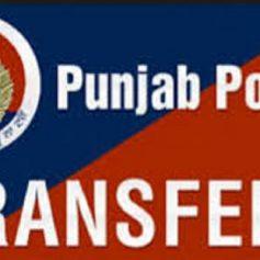 punjab government transfer 80 dsp