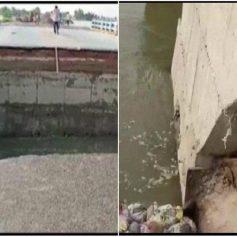 bihar gopalganj bridge destroyed