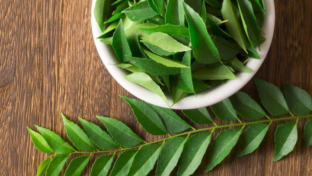 Curry leaf Benefits