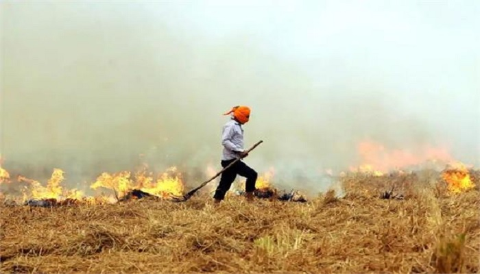 Experts warn against burning straw