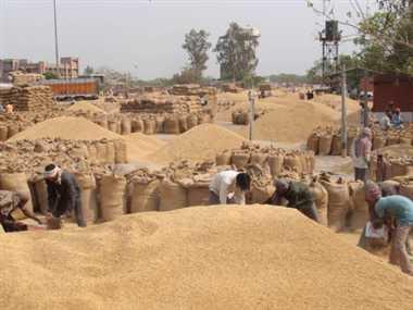 up farmers stopped at haryana border
