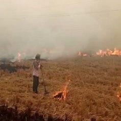 delhi highcourt on burning petition