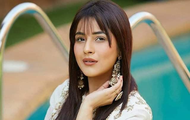 Shehnaaz Gill Viral video