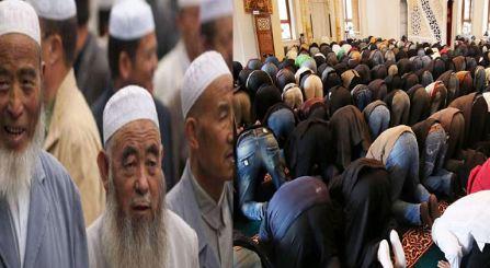 Muslim population doubling