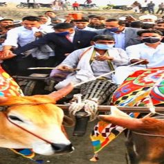 Sachin pilot visited by bullock cart