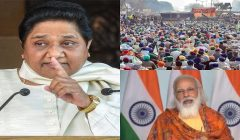 Mayawati twitter reaction