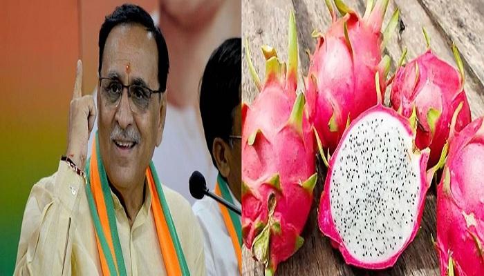 Gujarat cm vijay rupani announced