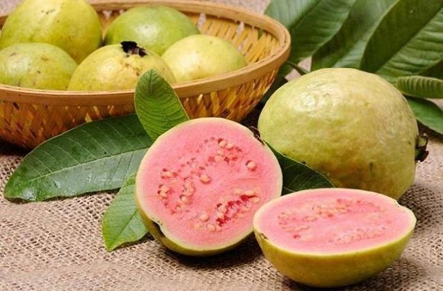 Guava health benefits