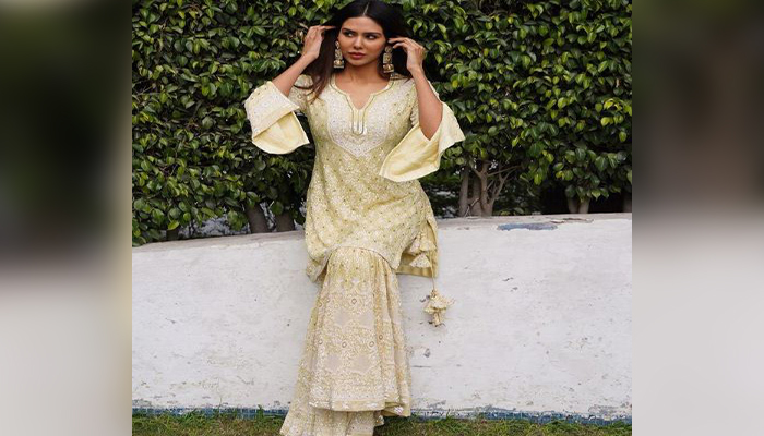 beauiful pictures of sonam bajwa