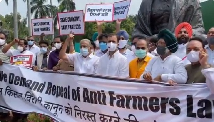 congress mps rahul gandhi protest parliament