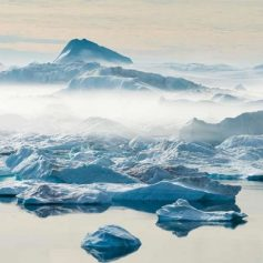 greenland rainfall for the first time