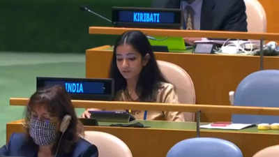 India strong reply Pak at UNGA