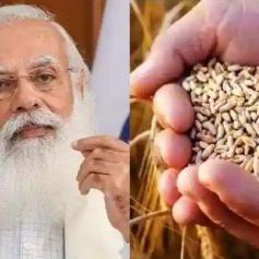 modi govt increase msp rabi crops