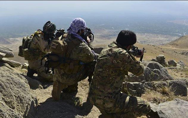 600 Taliban fighters killed