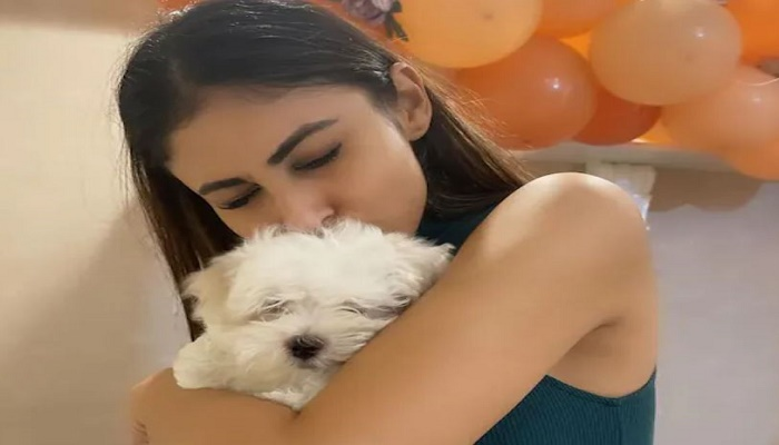 mouni roy beautiful pictures